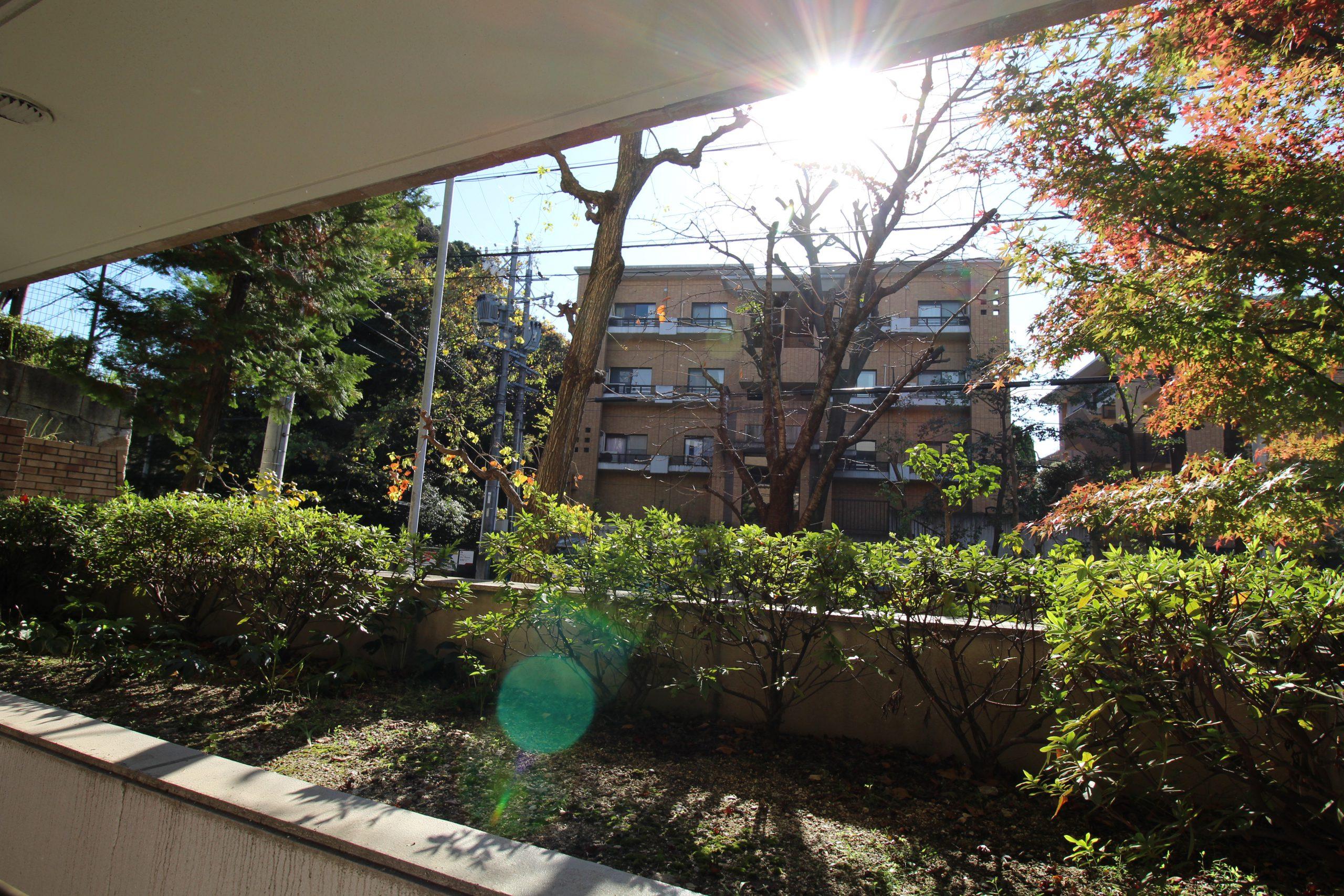 ハイクラス!川名公園近く、丘の上のマンション